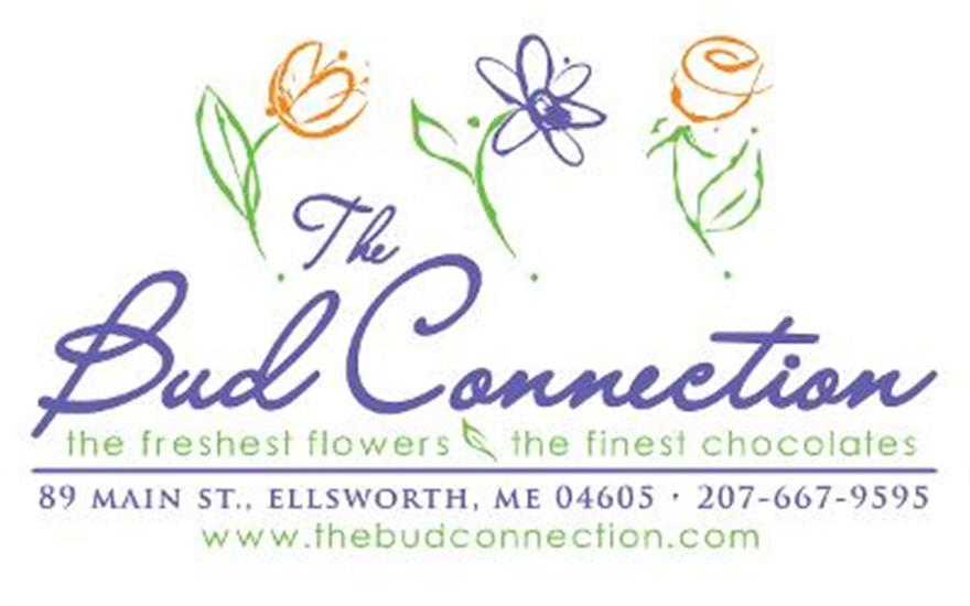 The Bud Connection