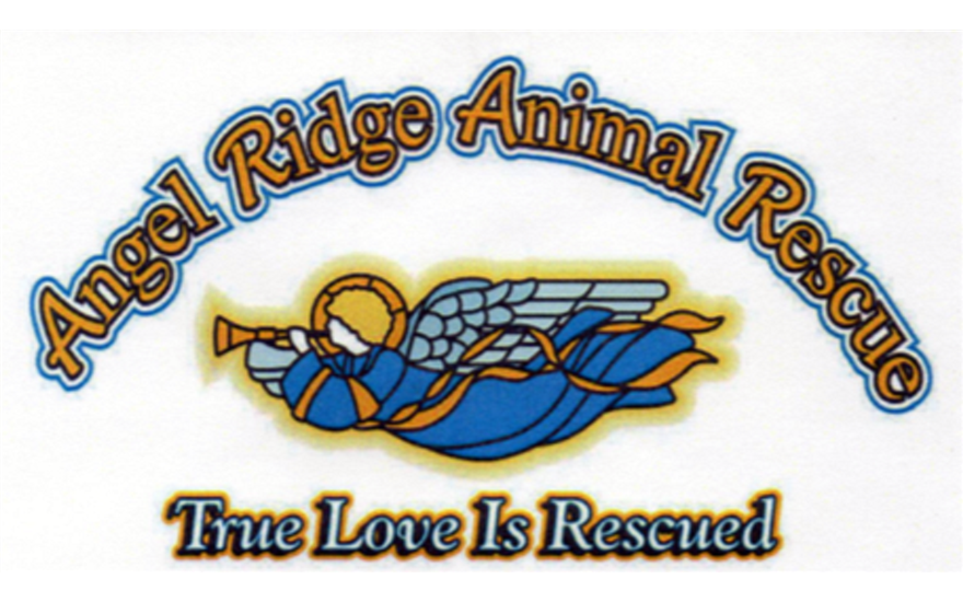 Angel Ridge Animal Rescue