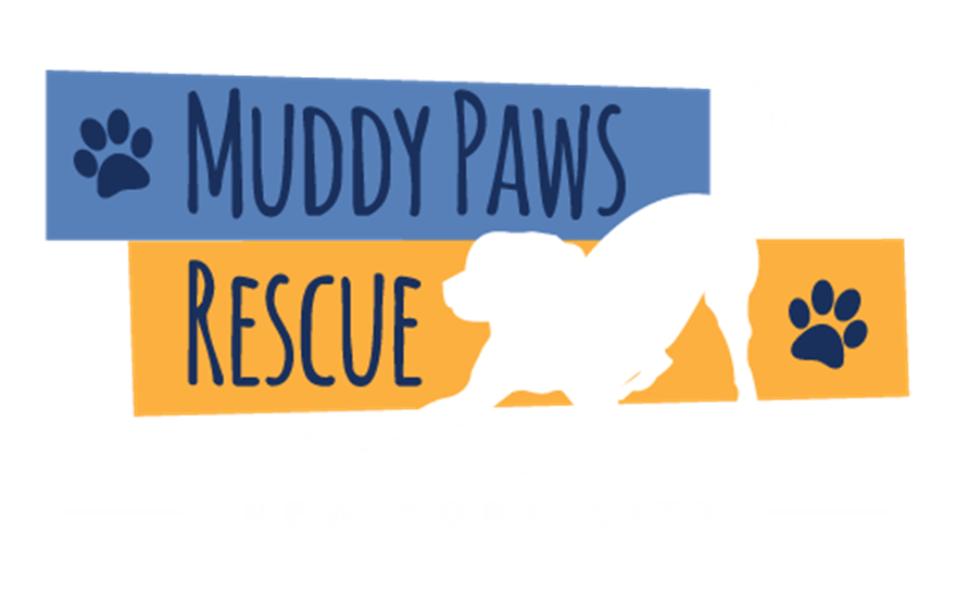 Muddy Paws Rescue