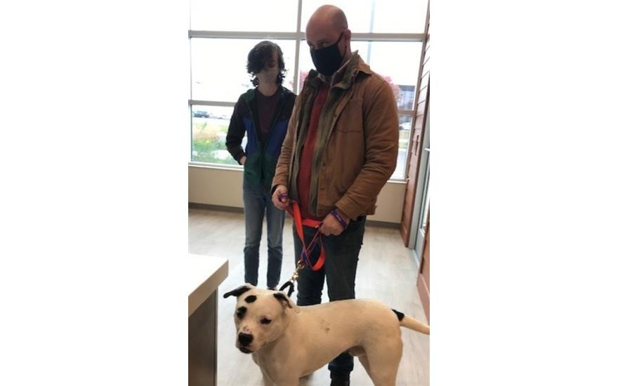 Gerald Subaru helped a dog find his new home!