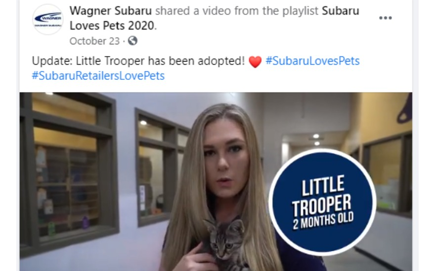 Wagner Subaru Helps A Special Pet Find His Home