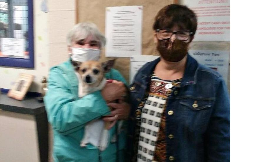 HELPING THE FINGER LAKES SPCA OF CNY DO ITS JOB!