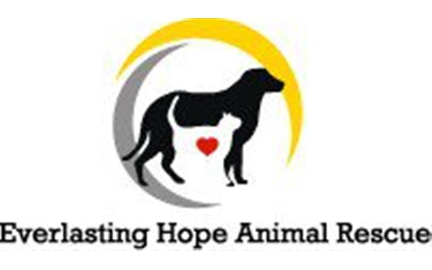 Everlasting Hope Animal Rescue