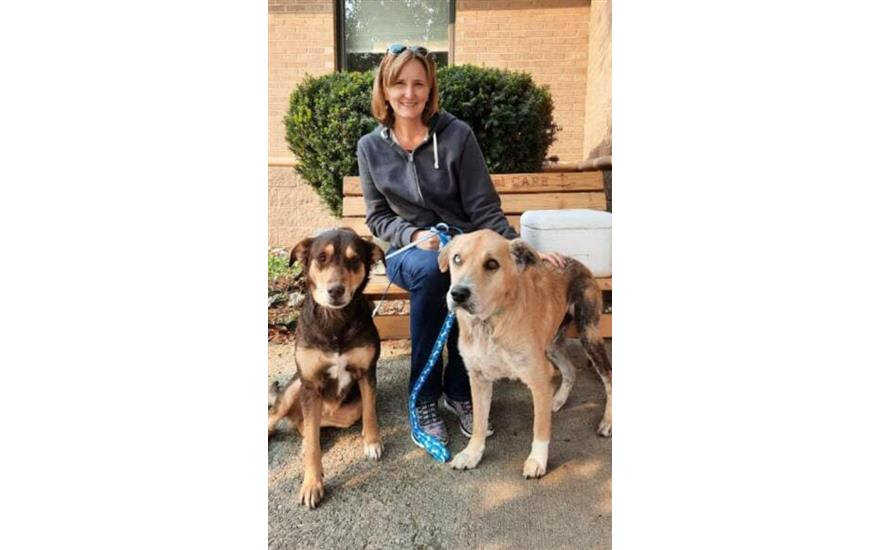 Beechmont Subaru Helps Bonded Pair Get Adopted!