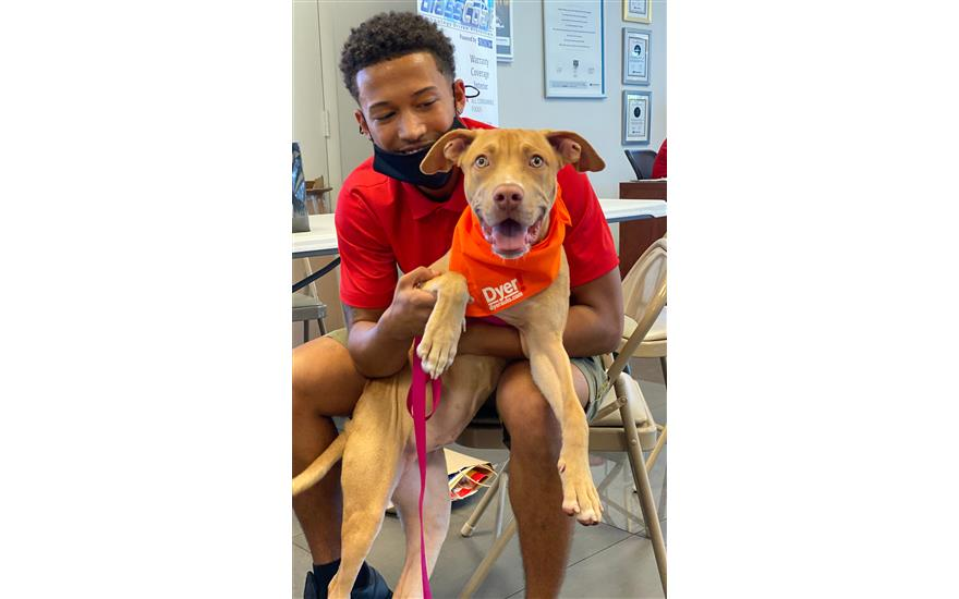 DYER Subaru finds new homes for shelter pets