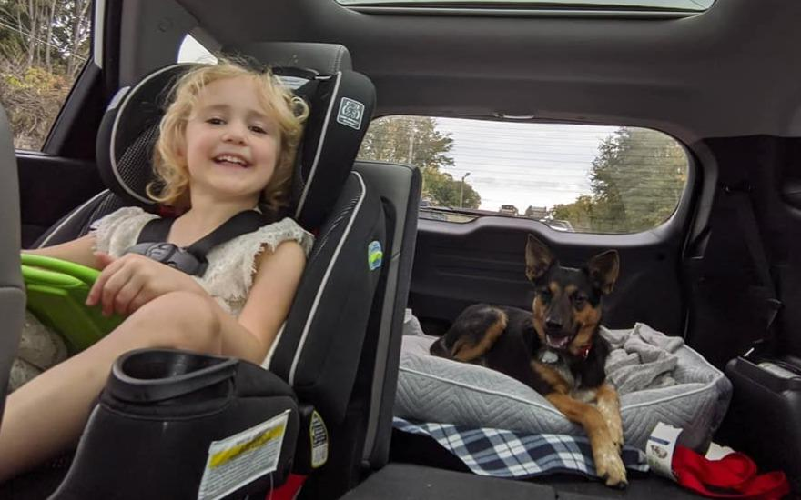 Loving Families 'Drive to Rescue' Pets in Need!