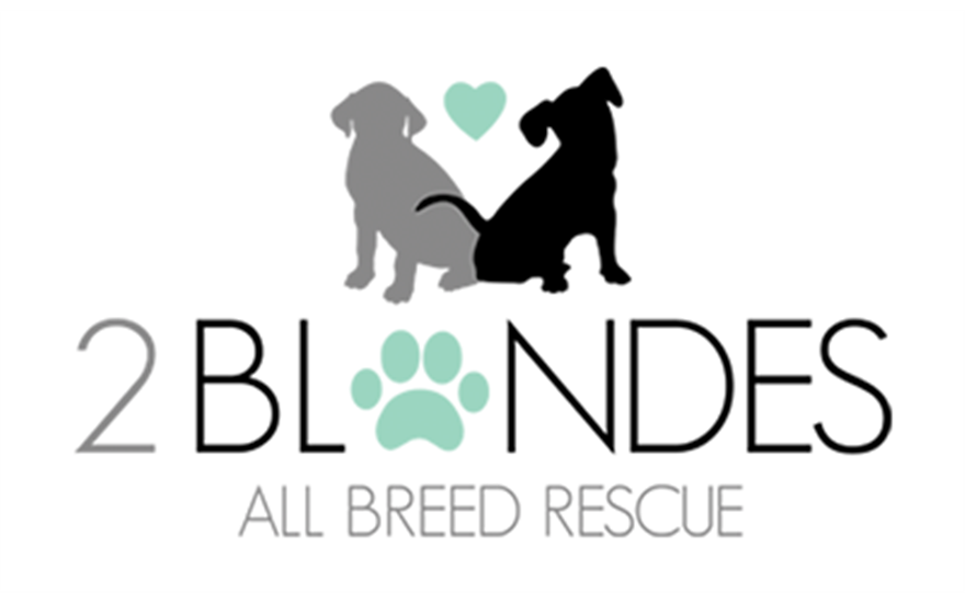2 Blonds All Breed Rescue