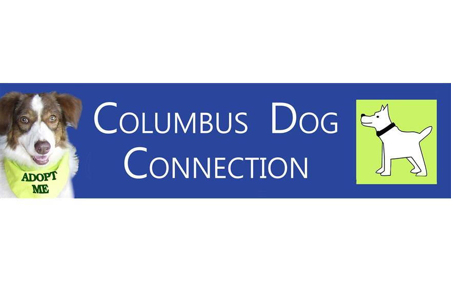 The Columbus Dog Connection