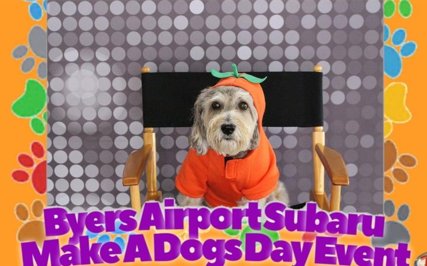 Byers Airport Subaru Loves Pets