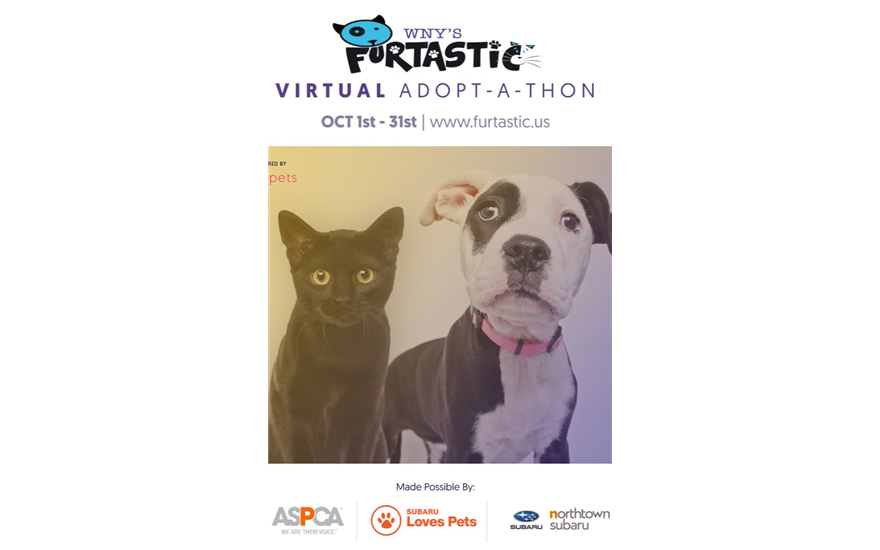 WNY's Furtastic Adopt-A-Thon Goes Virtual