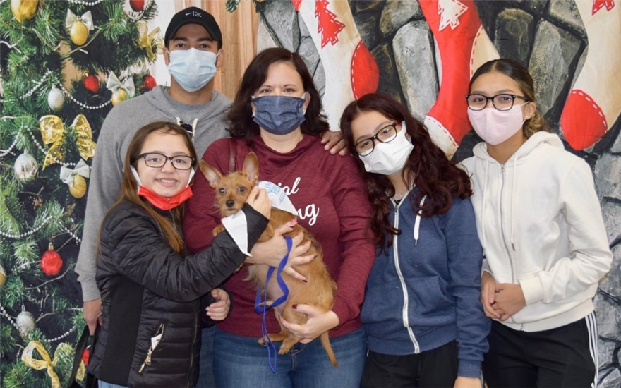 Animals Find a Home for the Holidays