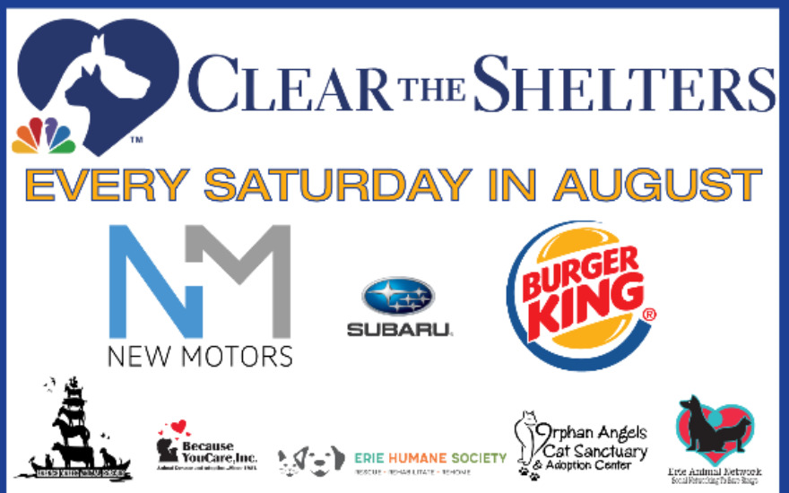 Clear The Shelters-Saving Animals!