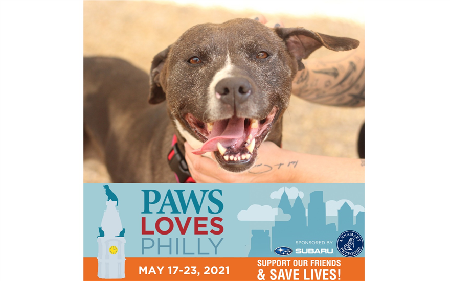 Helping Philly's Pets & the People Who Love Them