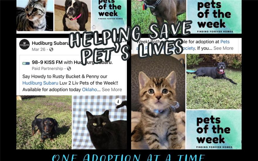 Helping Save Pet's Lives one Adoption at a Time
